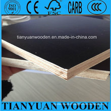 12mm Full Eucalyptus Core Marine Plywood, Film Faced Plywood
